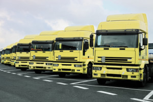 many big yellow trucks parked in line